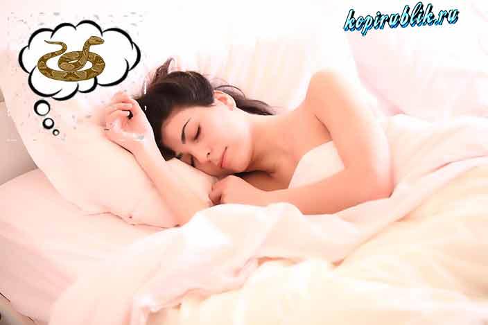 женщина видит змею во сне